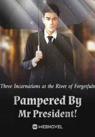 Pampered By Mr President!